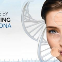 נזקים ב-DNA . האם גורם הזדקנות מוקדמת של עורך?